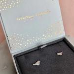 By Lauren Amsterdam - Flying High Silver Box
