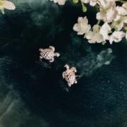 By Lauren Amsterdam - Little Miss Turtles