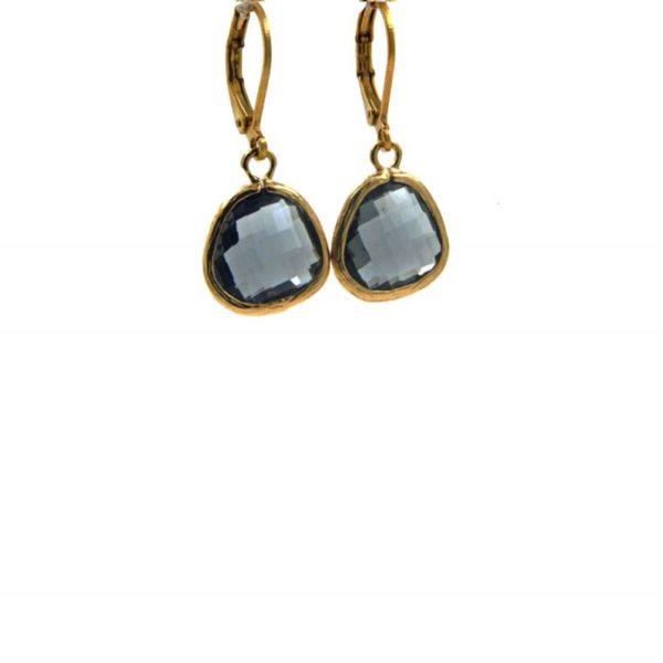 Lilly Jewelry - Earrings Gold Grey 01