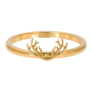 Ixxxi - Symbol Antlers Gold R03506