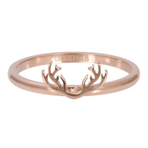 Ixxxi - Symbol Antlers Rosegold R03506