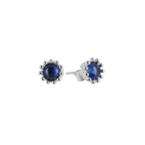 Coby van den Bor - Earrings Kyanite 785